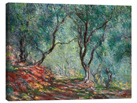 Canvas print  Olijfbomen in de Moreno-tuin - Claude Monet