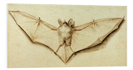 PVC print  Bat with spread wings - Hans Holbein d.J.