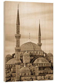 Hout print  the blue mosque in sepia (Istanbul - Turkey) - gn fotografie