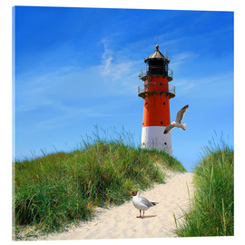 Acrylglas print  On lighthouse at the dike - Monika Jüngling