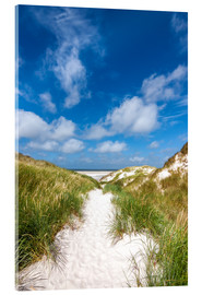 Acrylglas print  Path to the beach - Reiner Würz