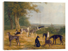 Hout print  Nine Greyhounds on a landscape - Jacques Laurent Agasse