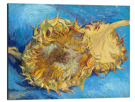 Aluminium print  Two sunflowers - Vincent van Gogh
