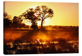 Canvas print  Morning in Africa - wiw