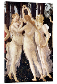 Acrylglas print  The Three Graces - Sandro Botticelli