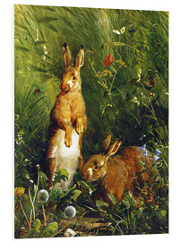 PVC print  Rabbits in a meadow - Olaf August Hermansen