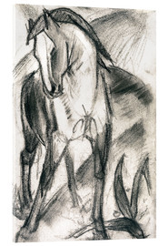 Acrylglas print  Young horse in mountain landscape - Franz Marc