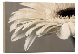 Hout print  White Gerbera with drops - Susanne Herppich