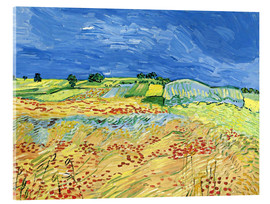 Acrylglas print  Fields with Blooming Poppies - Vincent van Gogh
