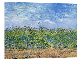 Acrylglas print  Corn field with poppies and partridge - Vincent van Gogh