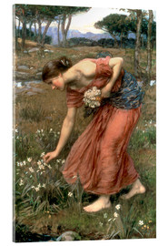 Acrylglas print  Narcissus - John William Waterhouse