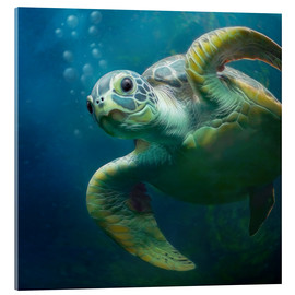 Acrylglas print  Bubbles, the cute sea turtle - Photoplace Creative