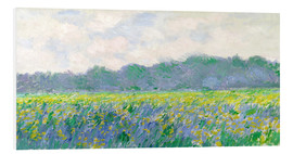 PVC print  Field of Yellow Irises in Giverny - Claude Monet