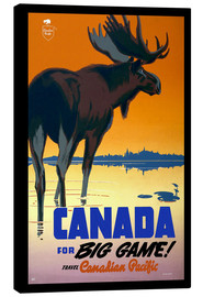 Canvas print  Canada - big game - Travel Collection
