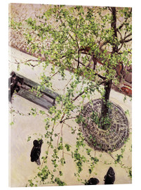 Acrylglas print  Boulevard from above - Gustave Caillebotte