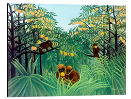 Aluminium print  Apes in the Orange Grove - Henri Rousseau