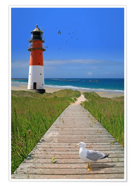 Premium poster  The road to the lighthouse by the sea - Monika Jüngling