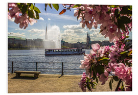 PVC print  Cherry on the Alster in Hamburg for Spring - Dennis Stracke