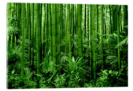 Acrylglas print  bamboo forest - GUGIGEI