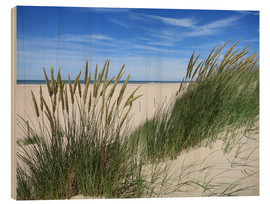 Hout print  thriving beach grass in the dunes - Susanne Herppich