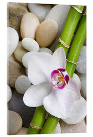 Acrylglas print  Bamboo and orchid - Andrea Haase Foto