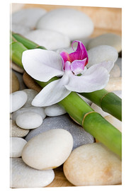 Acrylglas print  Bamboo and orchid II - Andrea Haase Foto