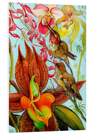 PVC print  Exotic birds on orchids