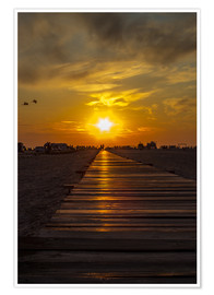 Premium poster  Evening sun in St Peter Ording on the North Sea - Dennis Stracke
