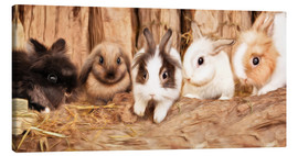 Canvas print  bunnys - Photoplace Creative