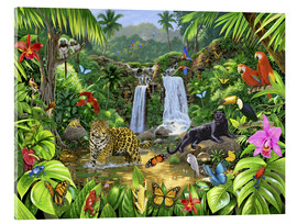 Acrylglas print  Rainforest harmony - Chris Hiett