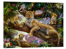 Acrylglas print  Tree Top Leopard Family - Jan Patrik Krasny