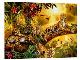 Acrylglas print  Jungle Jaguars - Jan Patrik Krasny