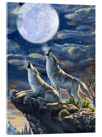 Acrylglas print  Midnight Wolves - Adrian Chesterman