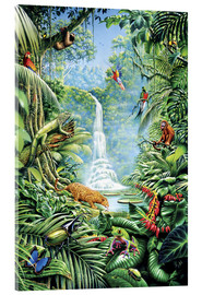 Acrylglas print  Save the rainforest - Gareth Williams