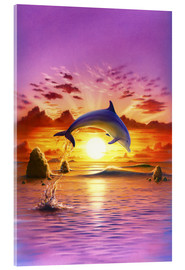 Acrylglas print  Day of the dolphin - sunset - Robin Koni