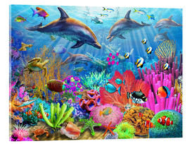 Acrylglas print  Dolphin coral reef - Adrian Chesterman