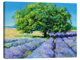 Canvas print  Tree and Lavenders - Jean-Marc Janiaczyk
