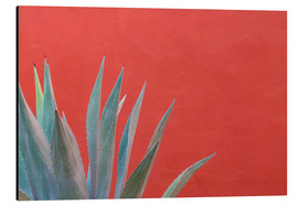 Aluminium print  Agave in front of red wall - Don Paulson