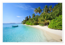 Premium poster Tropical beach with palms, Maldives