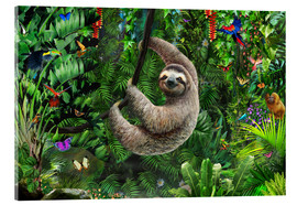 Acrylglas print  Sloth in the jungle - Adrian Chesterman