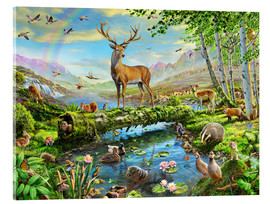 Acrylglas print  24402 Wildlife Splendor UK - Adrian Chesterman