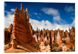 Acrylglas print  Queen's garden trail at Bryce Canyon - Circumnavigation