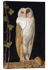 Canvas print  The White Owl - William James Webbe