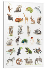 Aluminium print  ABC animals (German) - Nadine Conrad