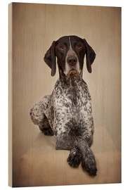 Hout print  German shorthaired pointer / 1 - Heidi Bollich