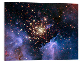 PVC print  Open star cluster NGC 3603, HST image - NASA