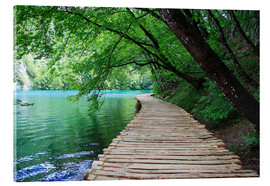 Acrylglas print  Plitvice Lakes National Park Boardwalk - Renate Knapp Waldundwiesenfee