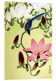 Acrylglas print  Magpie with Pink and White Magnolia Blossoms - Ohara Koson