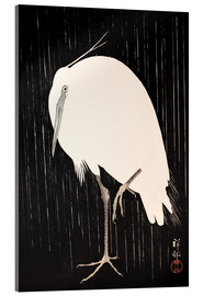 Acrylglas print  White Crane in the rain - Ohara Koson