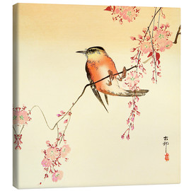 Canvas print  Red Bird and Cherry Blossoms - Ohara Koson